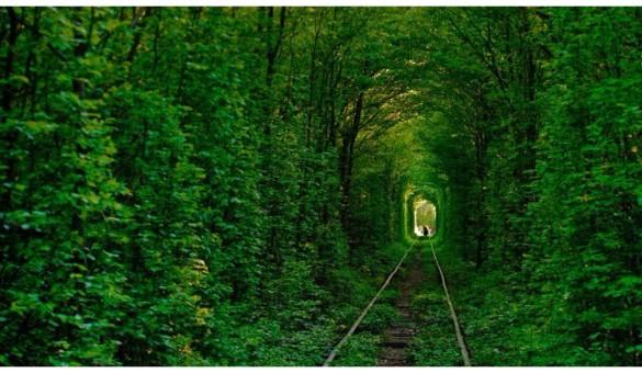 tunnel-of-love-ukraine-2