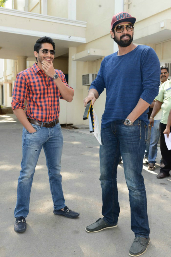 Naga Chaitanya, Rana Daggubati @ Krishnamma Kalipindi Iddarini Movie Trailer Launch Stills