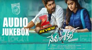 Nenu Local Audio Review