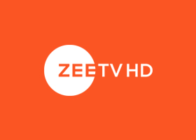 Domestic Broadcasting Business of ZEEL - ZEE Entertainment