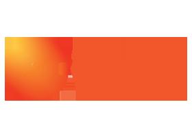 Domestic Broadcasting Business of ZEEL - ZEE Entertainment